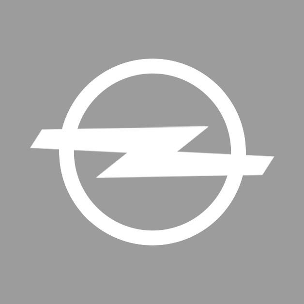 bhs-automarken-opel-grau